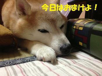20130701_13.JPG