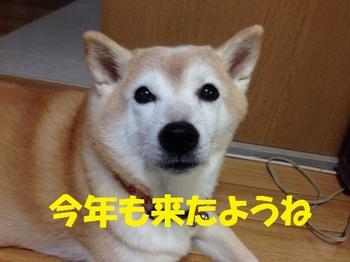 20130923_02.JPG