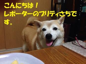 20131026_01.JPG