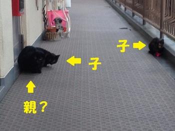 20131028_04.JPG