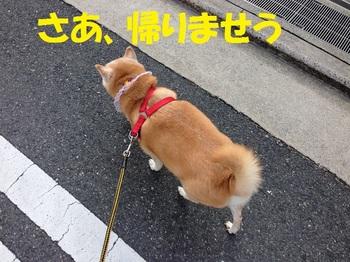 20131127_07.JPG