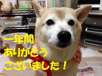 20131231_01.JPG