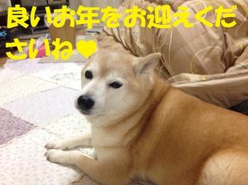 20131231_02.JPG