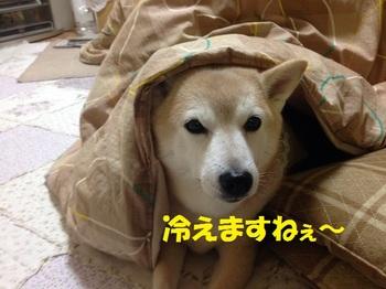 20140111_01.JPG