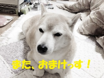20140308_04.JPG