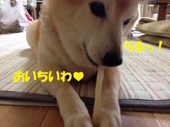 20140607_04.JPG