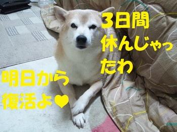 20130111_10.JPG