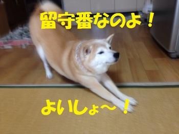 20130930_04.JPG
