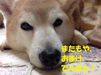 20140329_04.JPG